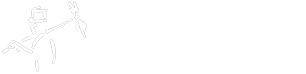 Master Clean Sweep Logo